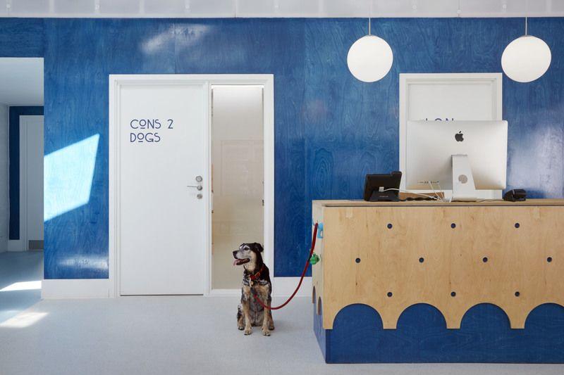 London Animal Hospital Tlah Open House London 2018 With