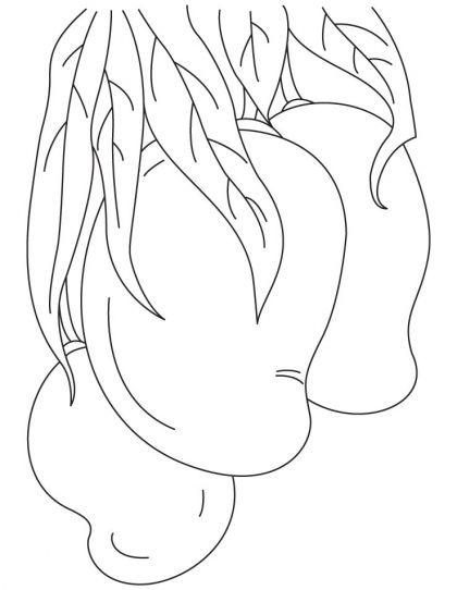 mango coloring page download free mango coloring page for kids best coloring pages