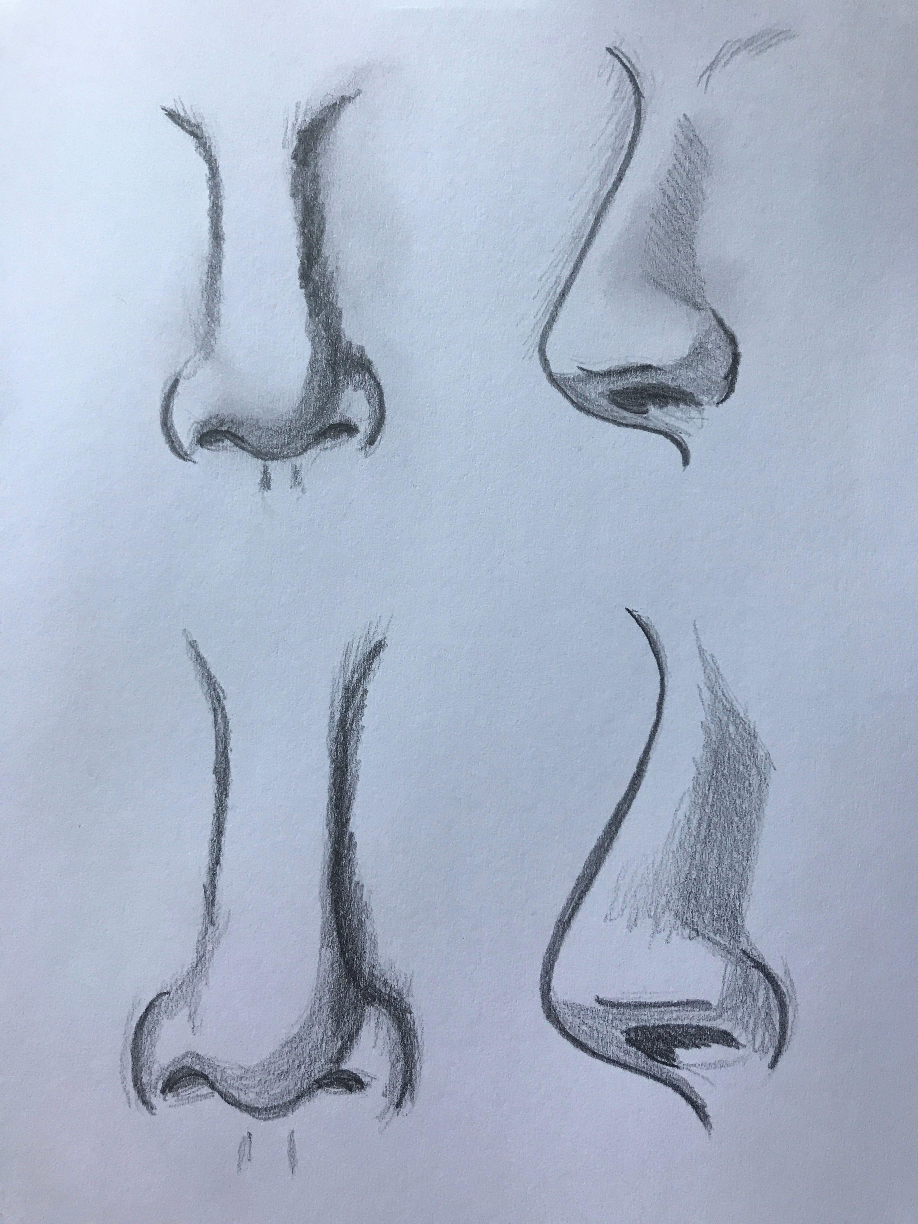 Tipos De Nariz A Lapiz Dibujo Nariz Tutorial De Dibujo Como Dibujar Nariz