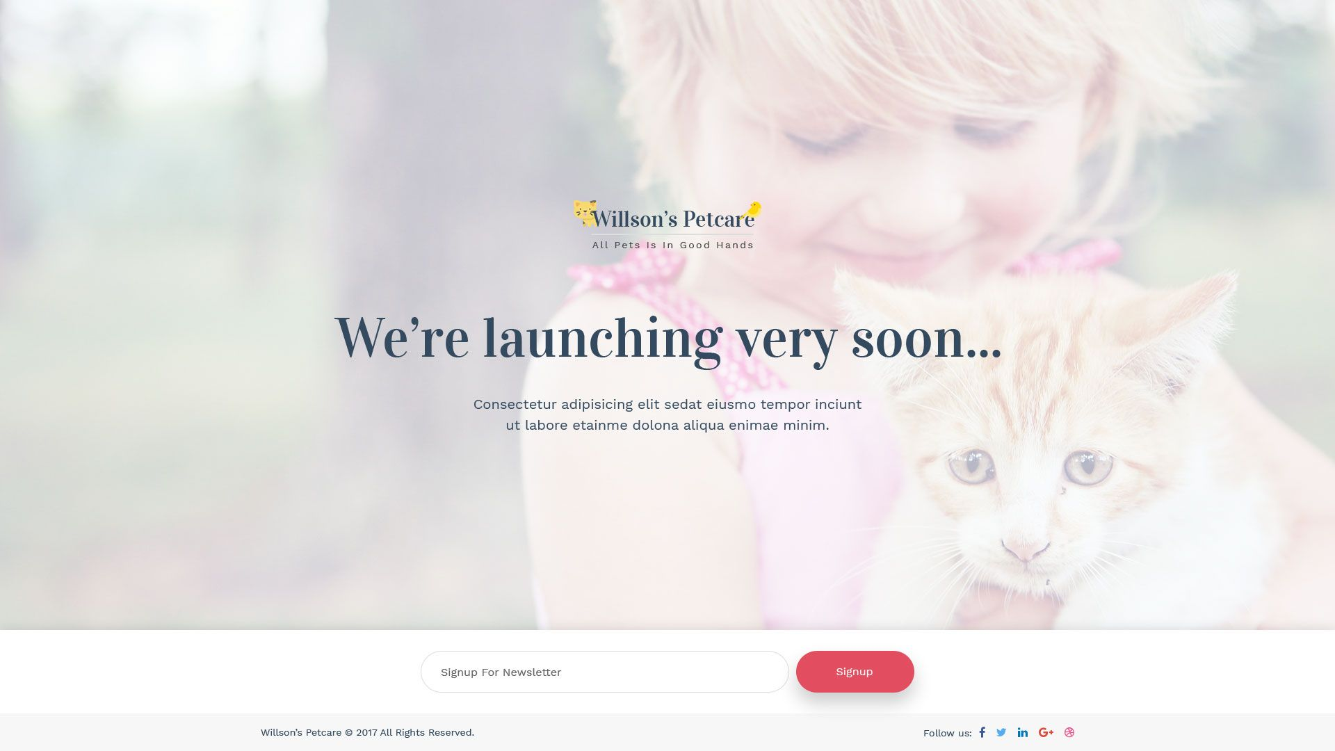 Pets Care Veterinary Clinic Psd Template With Images Pet