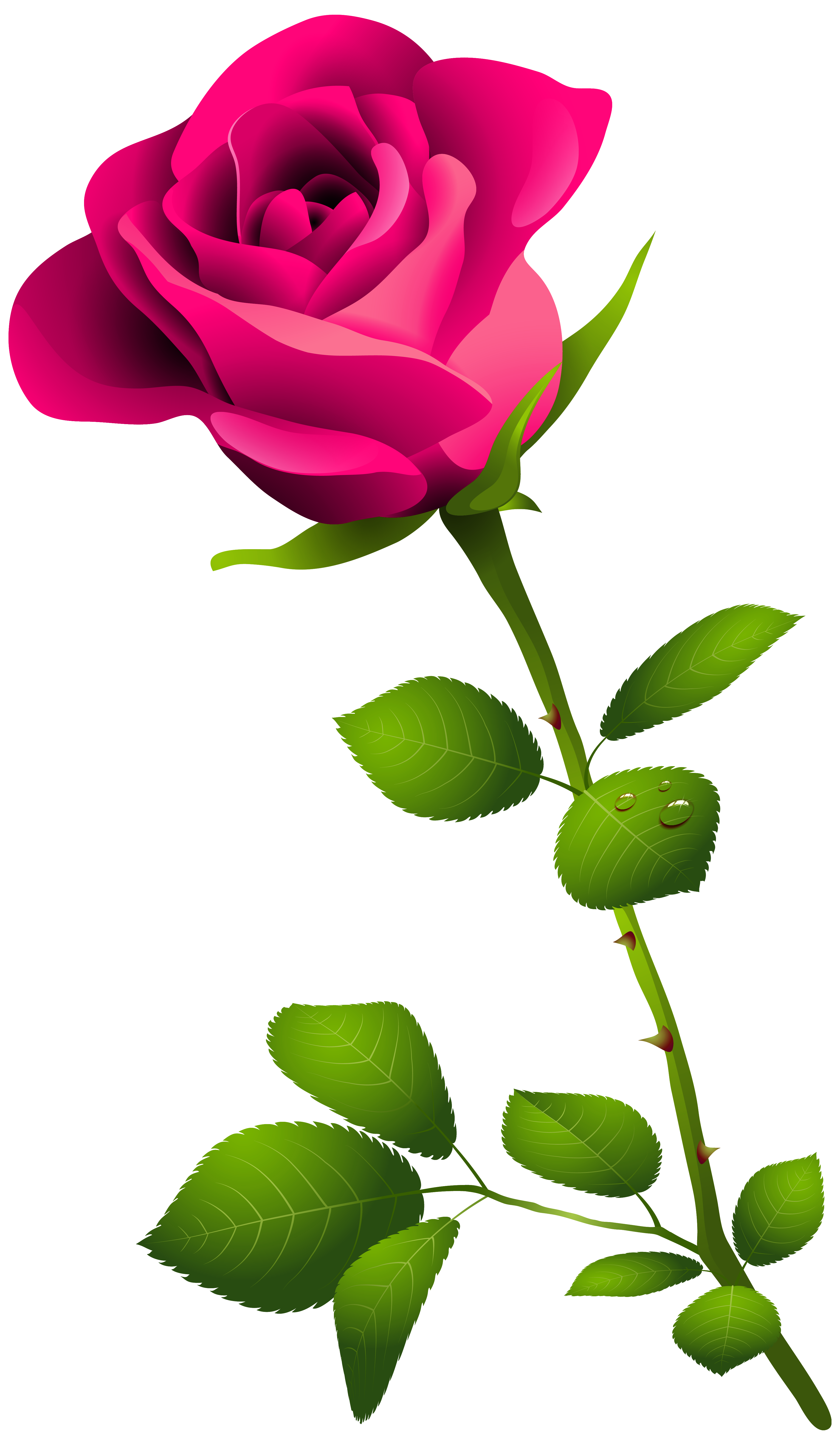 pink rose with stem png clipart image gallery yopriceville high rh pinterest ca