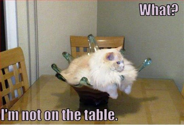 Not On The Table