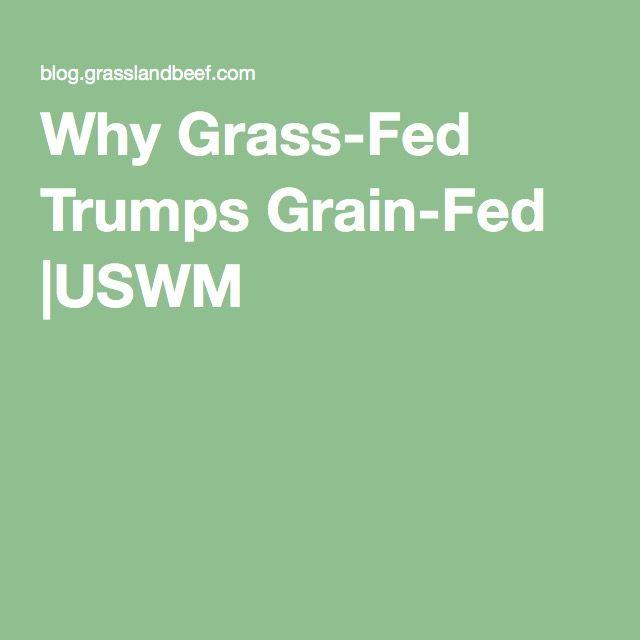 Why Grass-Fed Trumps Grain-Fed |USWM