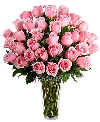 Send Flowers To Pakistan Our Gift Shop Has A Variety Of Fresh Flowers And Roses Arrangements We Have Special Flower Bouque Flower Delivery Pink Roses Flowers