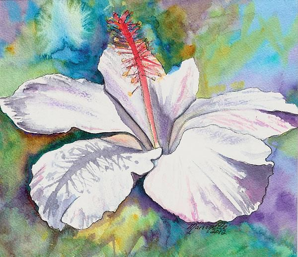 White Hibiscus Waimeae Painting