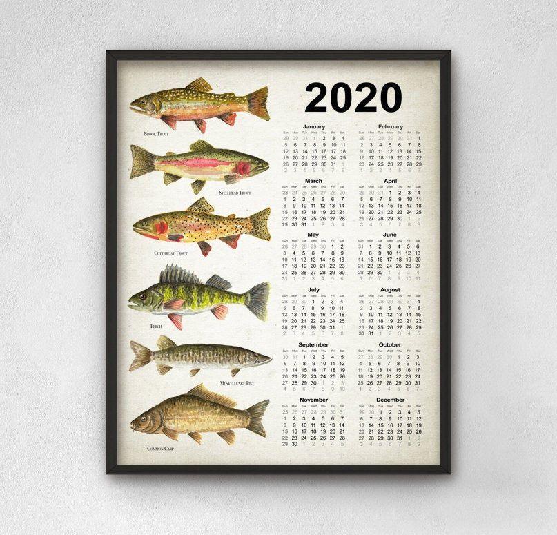 North American Fishing Calendar 2020 Angling Wall Art Calendar