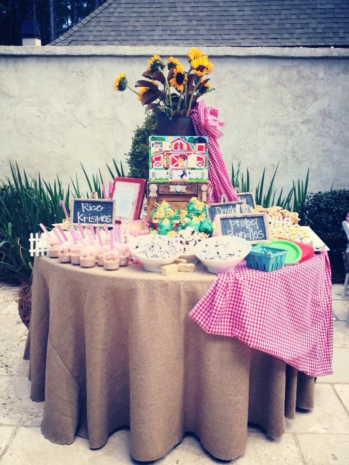 Barn Birthday Party Food Table planning by Shanna Lumpkin Events