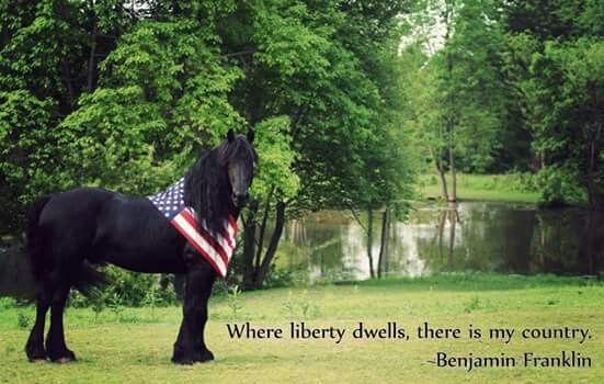 Liberty quote