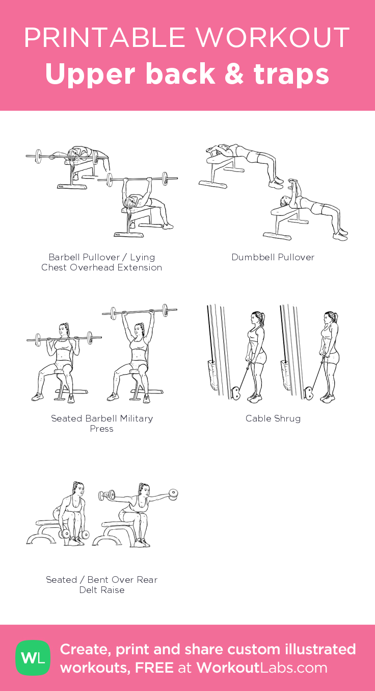 Upper back & traps: my visual workout created at WorkoutLabs.com • Click through to customize and download as a FREE PDF! #customworkout #GymBackWorkouts #trapsworkout