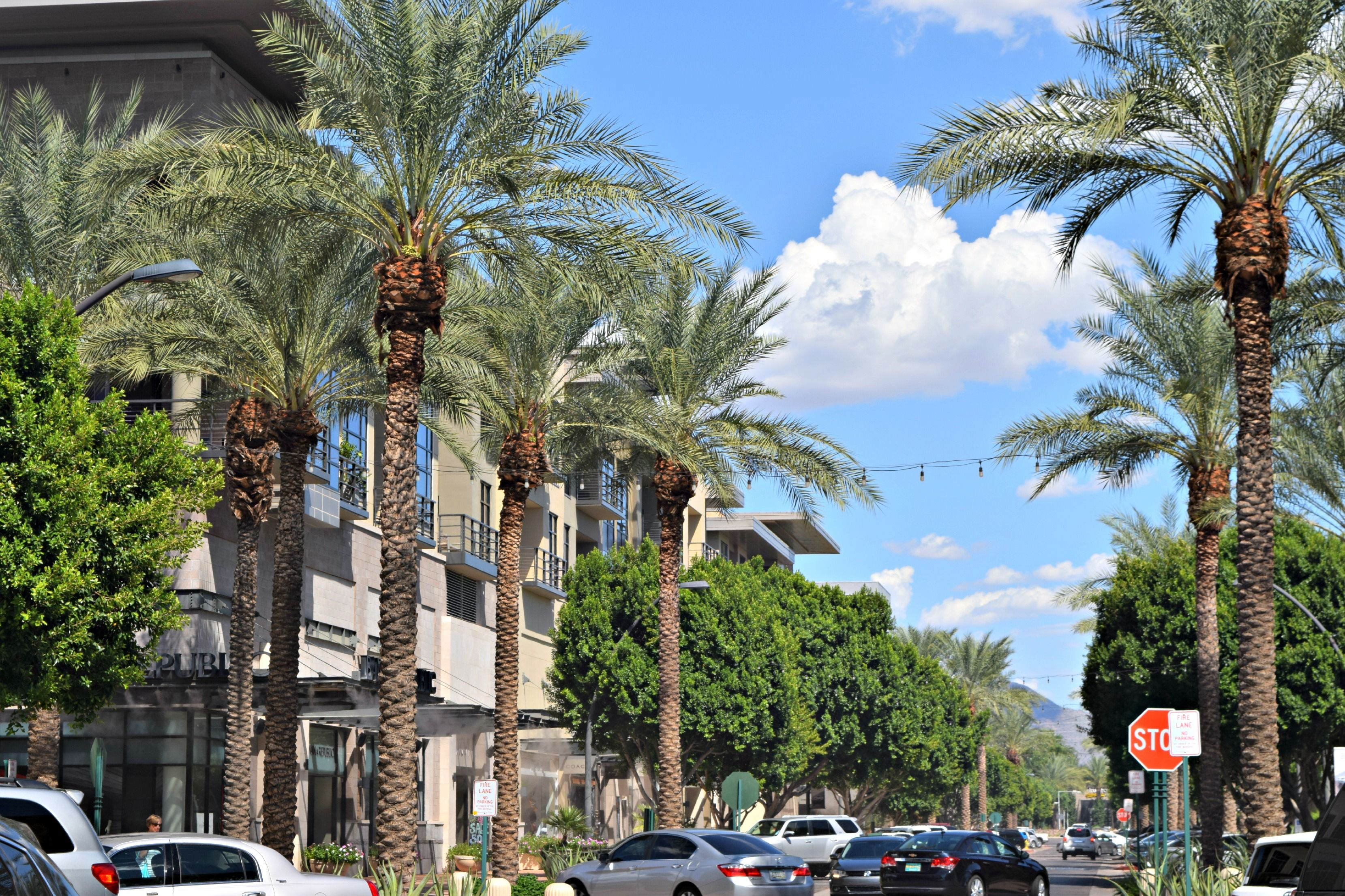Superb Kierland Commons Scottsdale Az Yes Its Outdoors But The Interior Design Ideas Gentotryabchikinfo