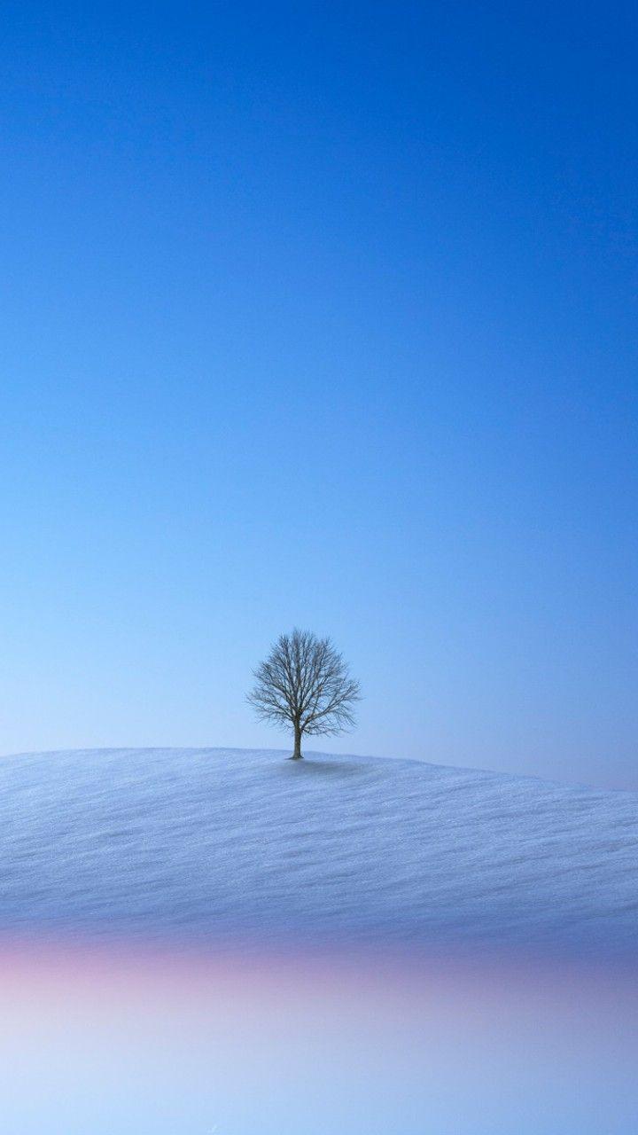 冬の景色 おしゃれまとめの人気アイデア Pinterest Kotakko Kotan
