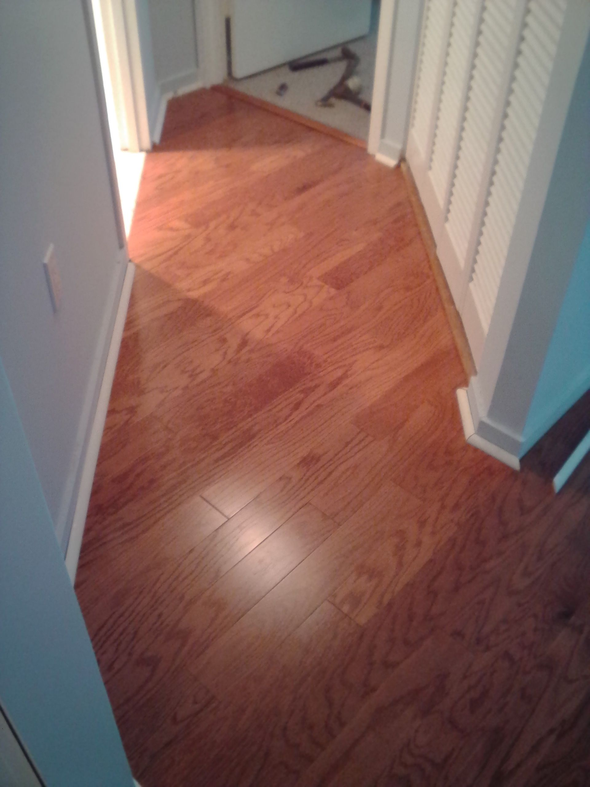 engineered floors collections hardwood torlys everest cliffside floor plank designer walnut flooring store sw wide smart