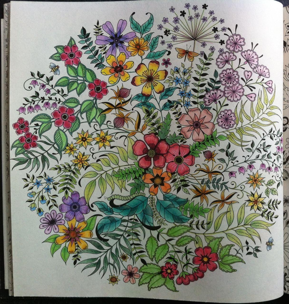 Explore Secret Garden Coloring Book And More Livre Jardin