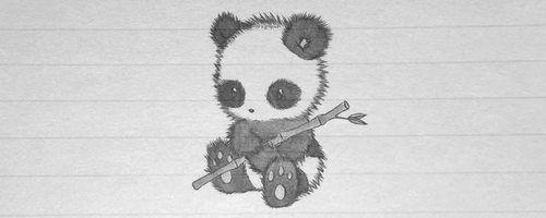 Panda Drawing