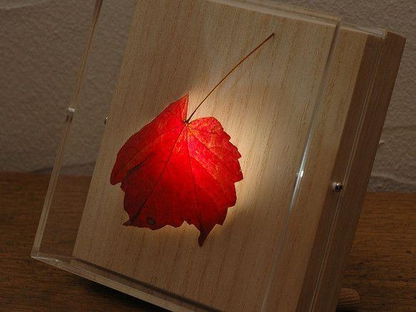 本物の「ナツヅタ」の紅葉をシェードに仕立てた照明です。小さな自然をお愉しみください。葉っぱの色は、画像ですと少し真っ赤に飛び気味ですが、実際はもっと複雑なニュ... ハンドメイド、手作り、手仕事品の通販・販売・購入ならCreema。