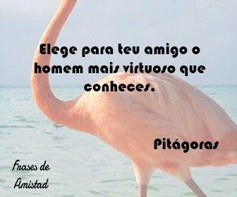 Frases De Amistad En Portugues De Pitágoras Frases De