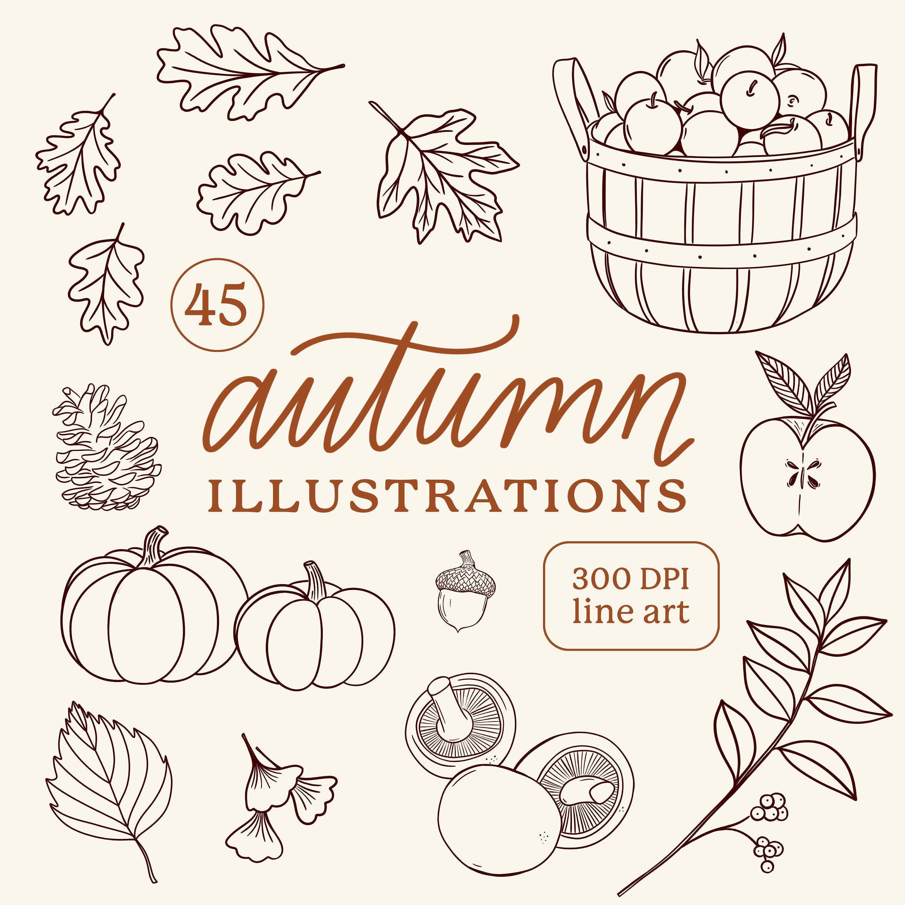 Autumn Illustrations Fall Harvest Line Drawings Clipart Png Etsy Autumn Illustration Autumn Doodles Fall Leaves Drawing