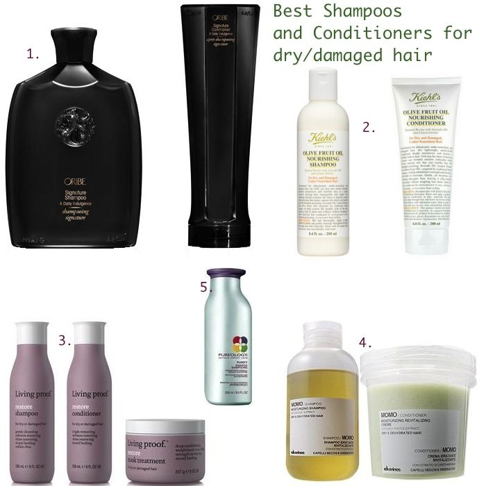 Pin By Isabel Rooney On F R O M T H E B L O G Good Shampoo And Conditioner Dry Damaged Hair Best Shampoos
