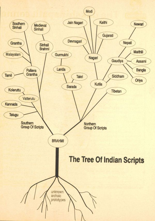 The tree of Indian scripts (Hindi taal en zuid aziatische