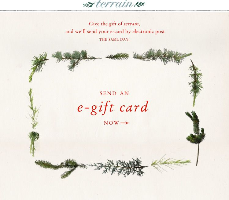 Gift Card | Gift, Email design and Gift voucher design