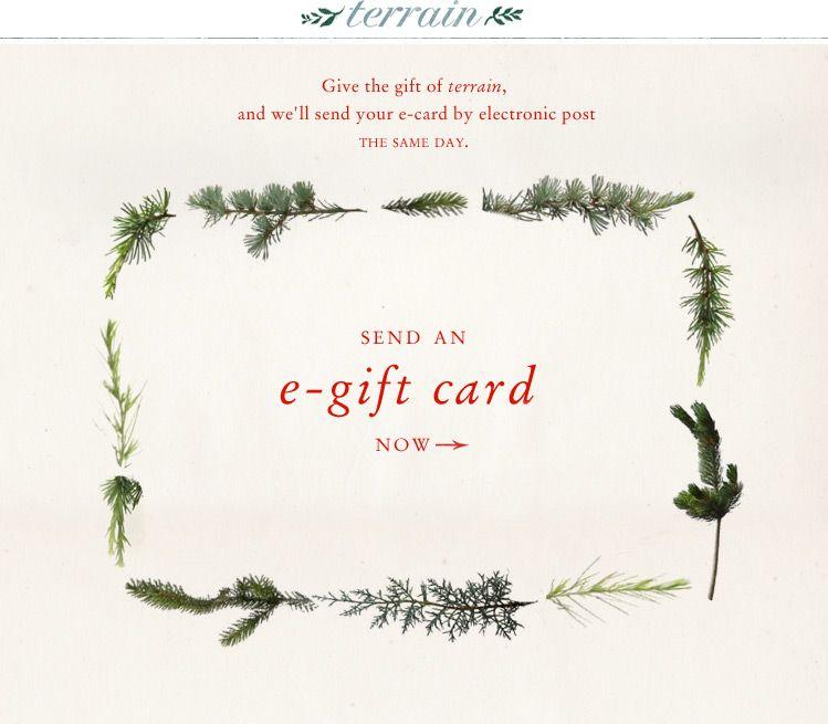 Gift card gift voucher design cards email design