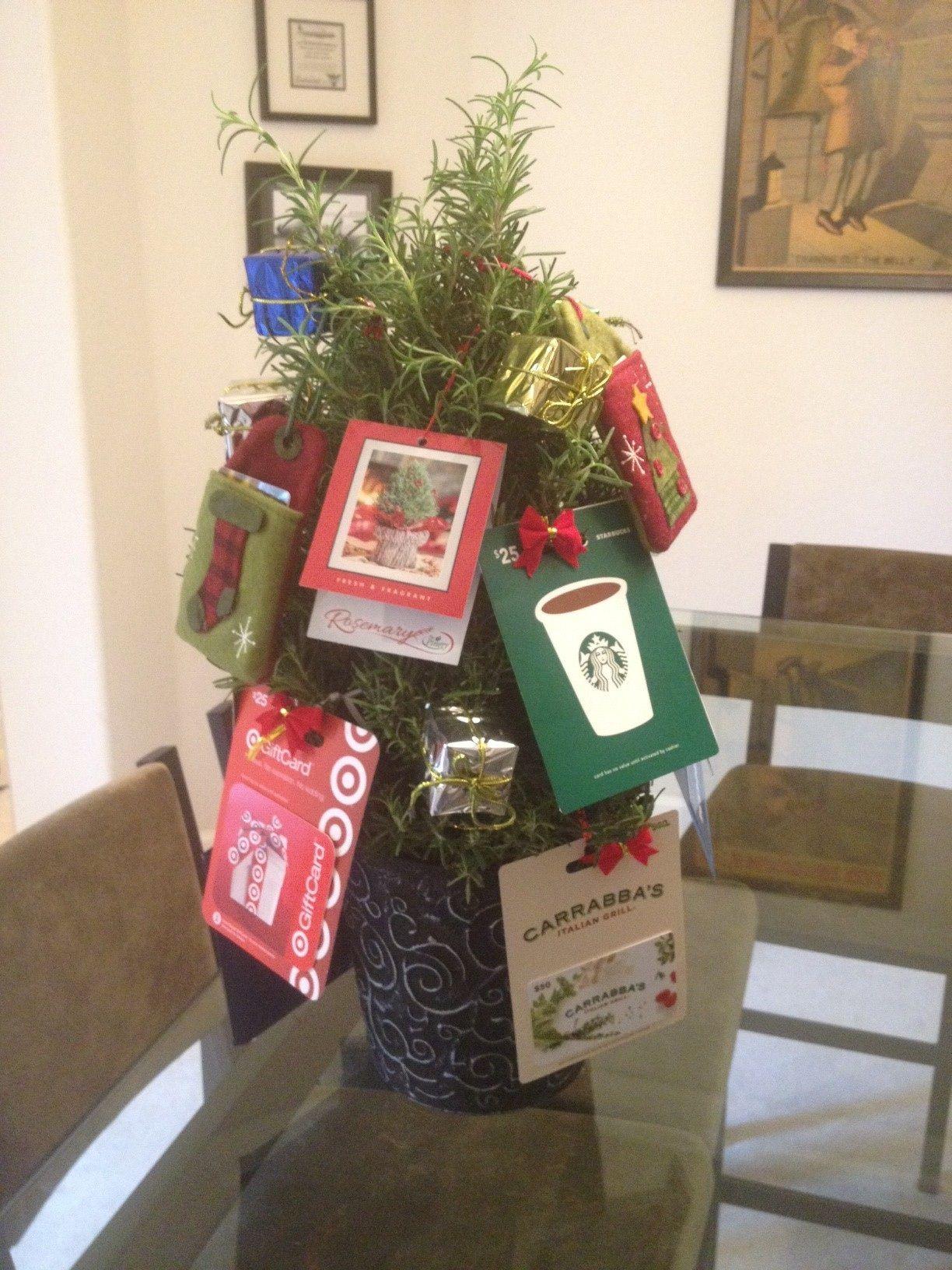 Teacher S Gift Rosemary Gift Card Christmas Tree Tree Gift Rosemary Tree Teacher Gifts