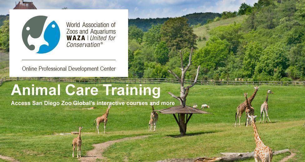 WAZA : World Association of Zoos and Aquariums   San diego ...