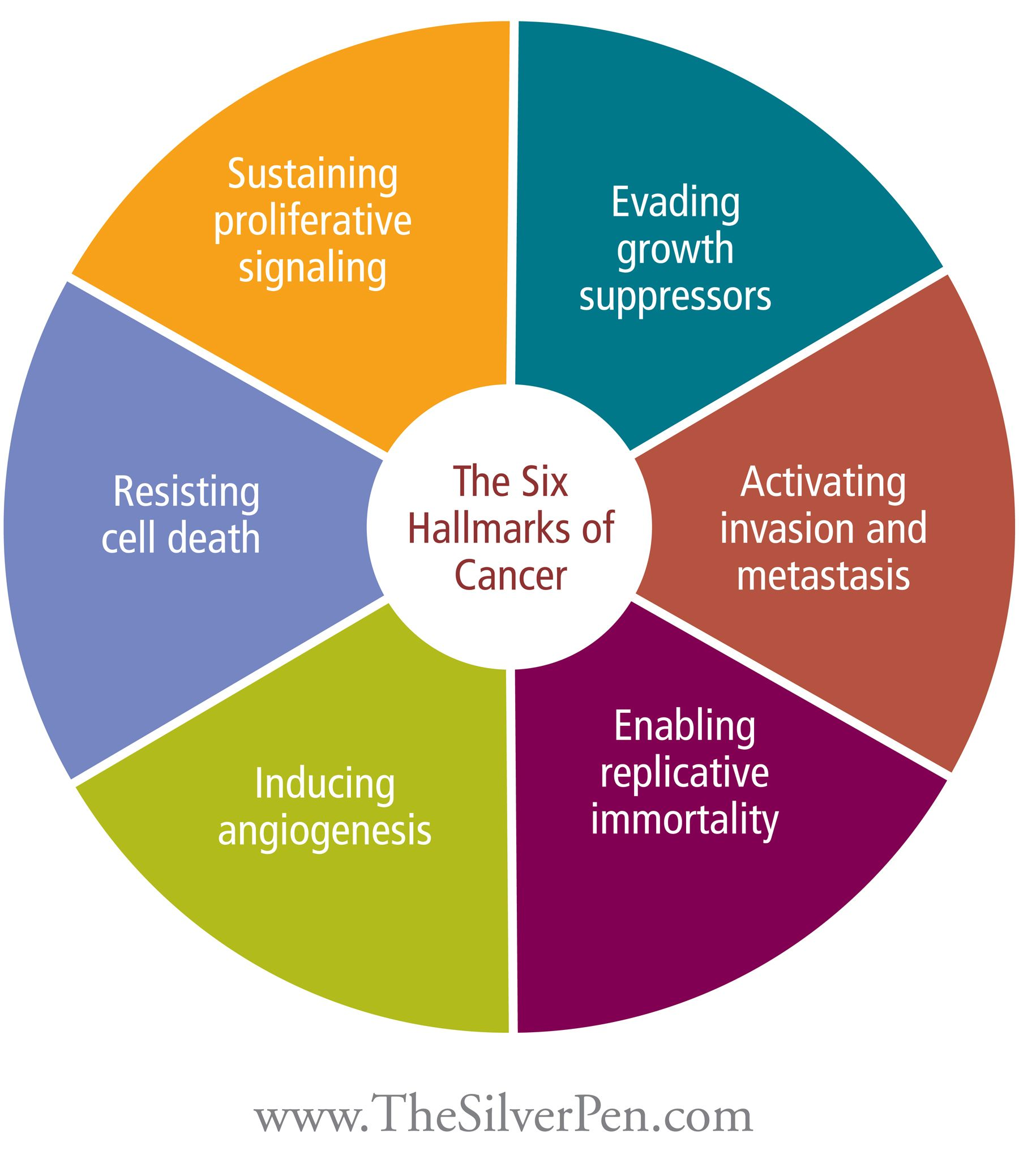 six hallmarks of cancer all the medical terminology is beautifully explained