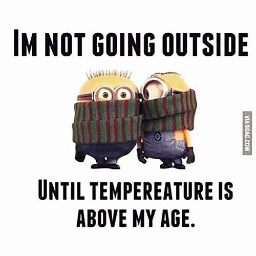 Love this!!! #minion #snow #fun #funny #winter #laugh #weather