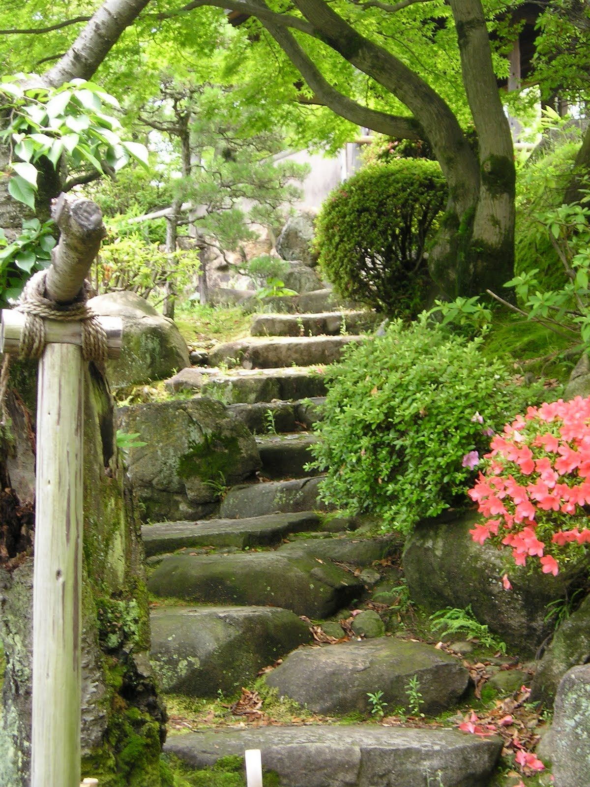 Japanese garden steps garden paths pinterest for Japanese garden stones
