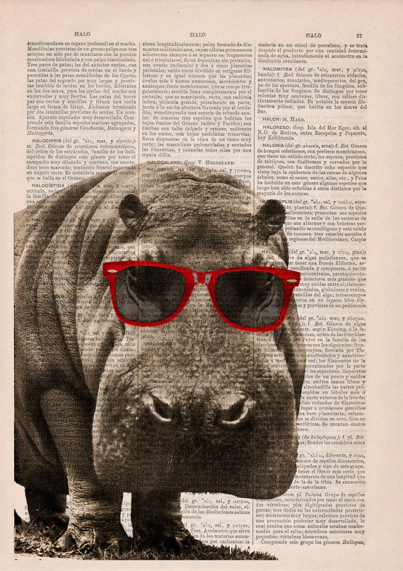 Cool Hippo With Sunglasses Wall Art Wall Decor Vintage