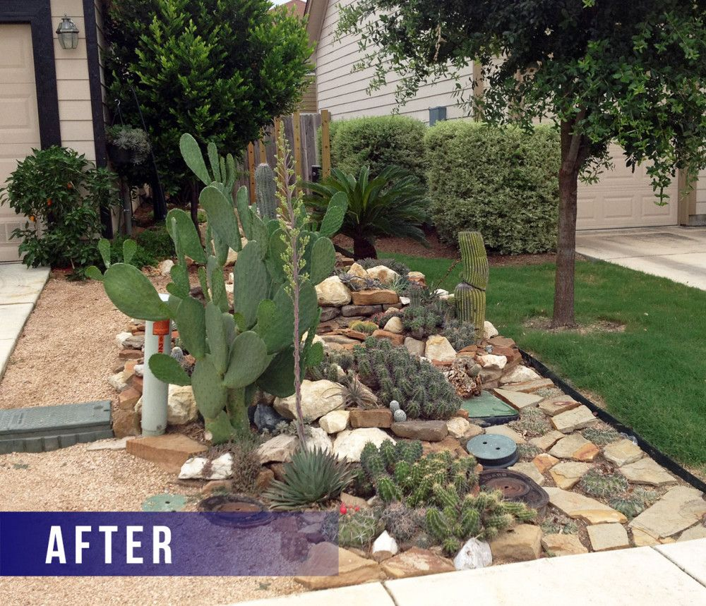 Yard And Garden Art: Xeriscape Front Yard Austin Small Yard Landscaping Ideas