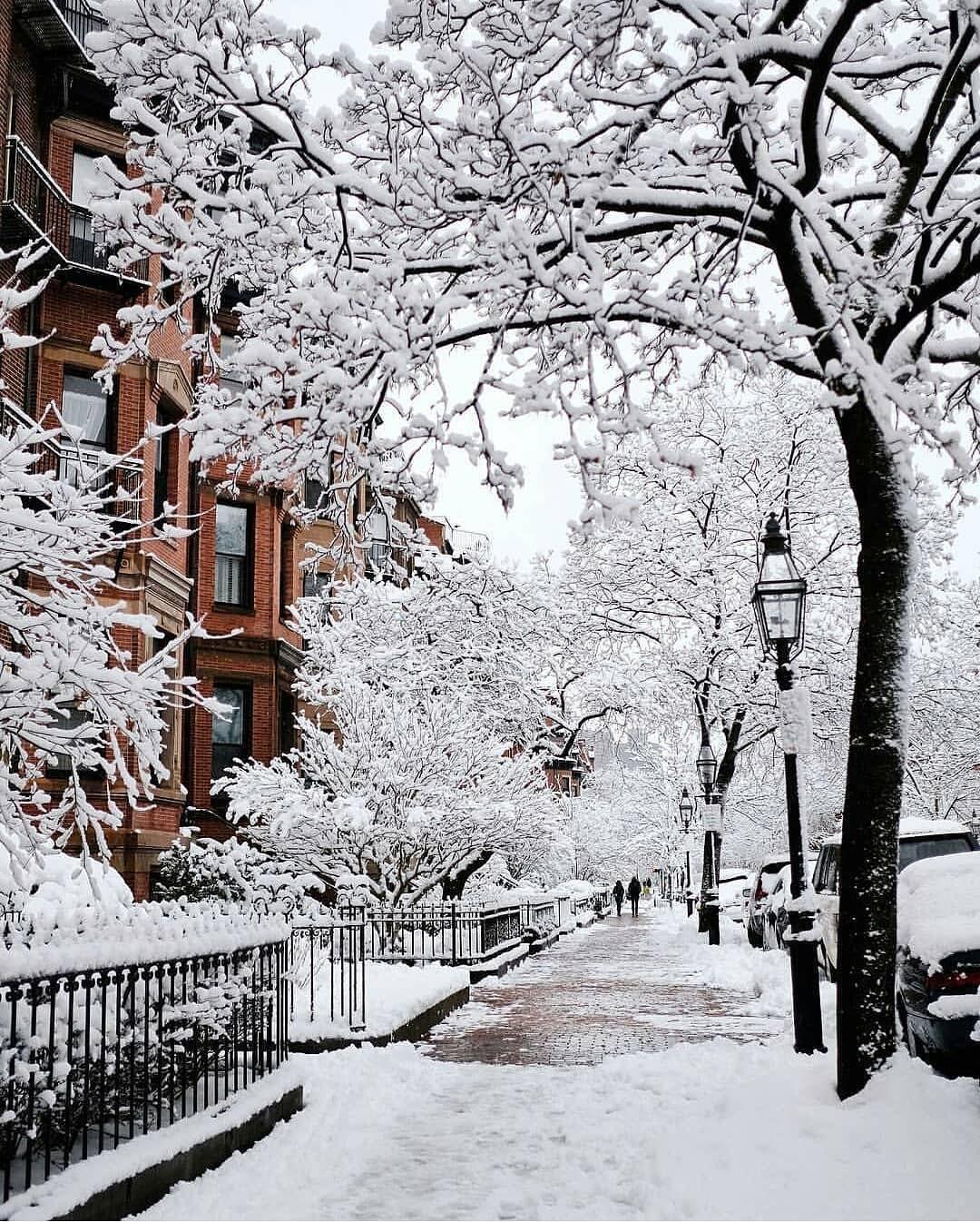 Winter Portrait Boston Massachusetts United States Photo By Kimmyn Winter Scenery Winter Images Winter Wallpaper