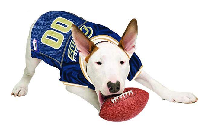 NCAA Iowa State Cyclones Athletic Mesh Dog Jersey