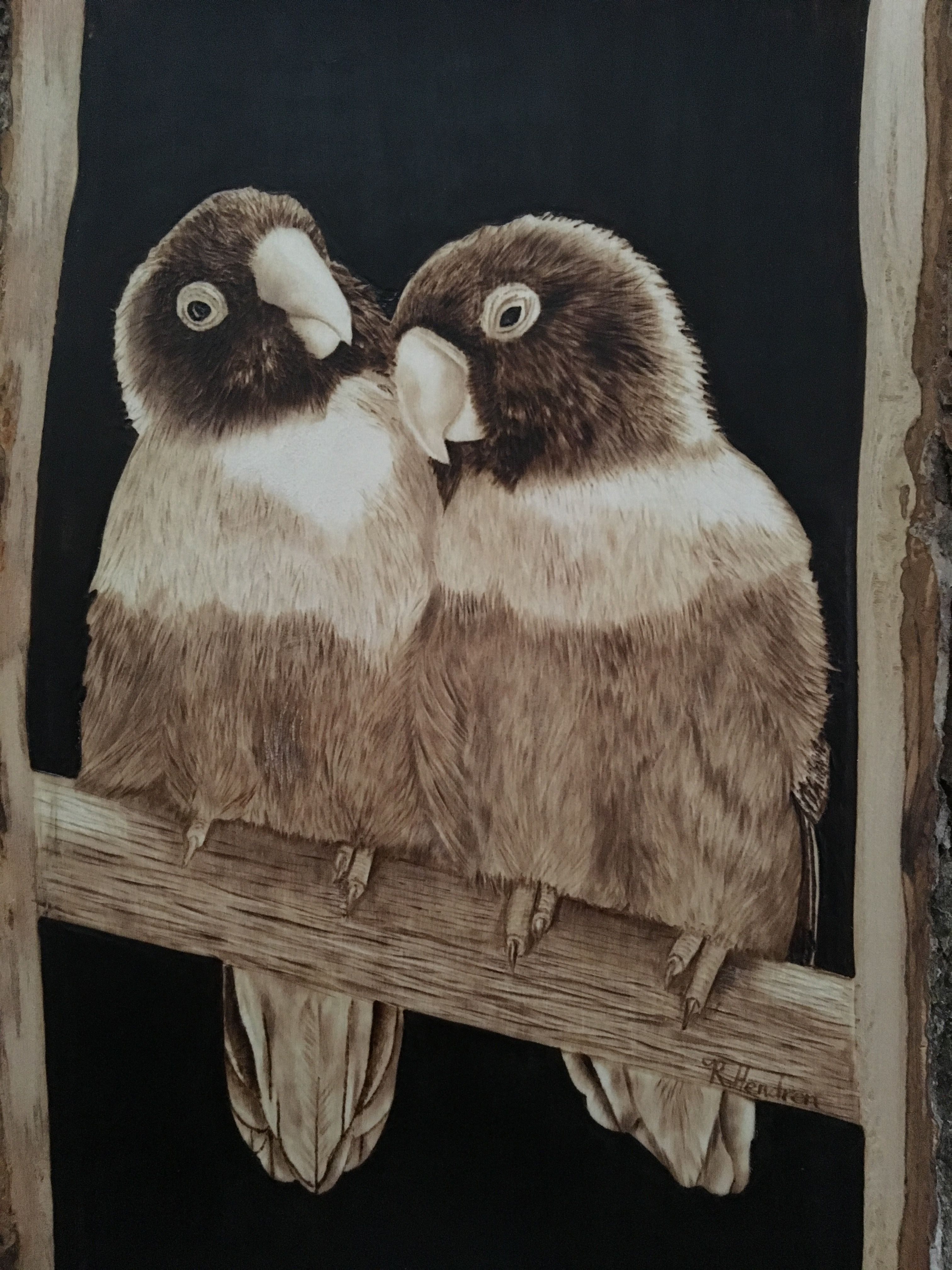 Wood burning Pyrography of lovebirds by Lucky Sparrow Pyrography ...
