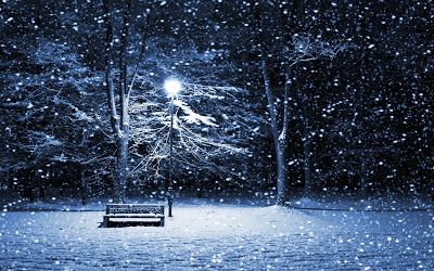 Froze Winter Night Wallpaper