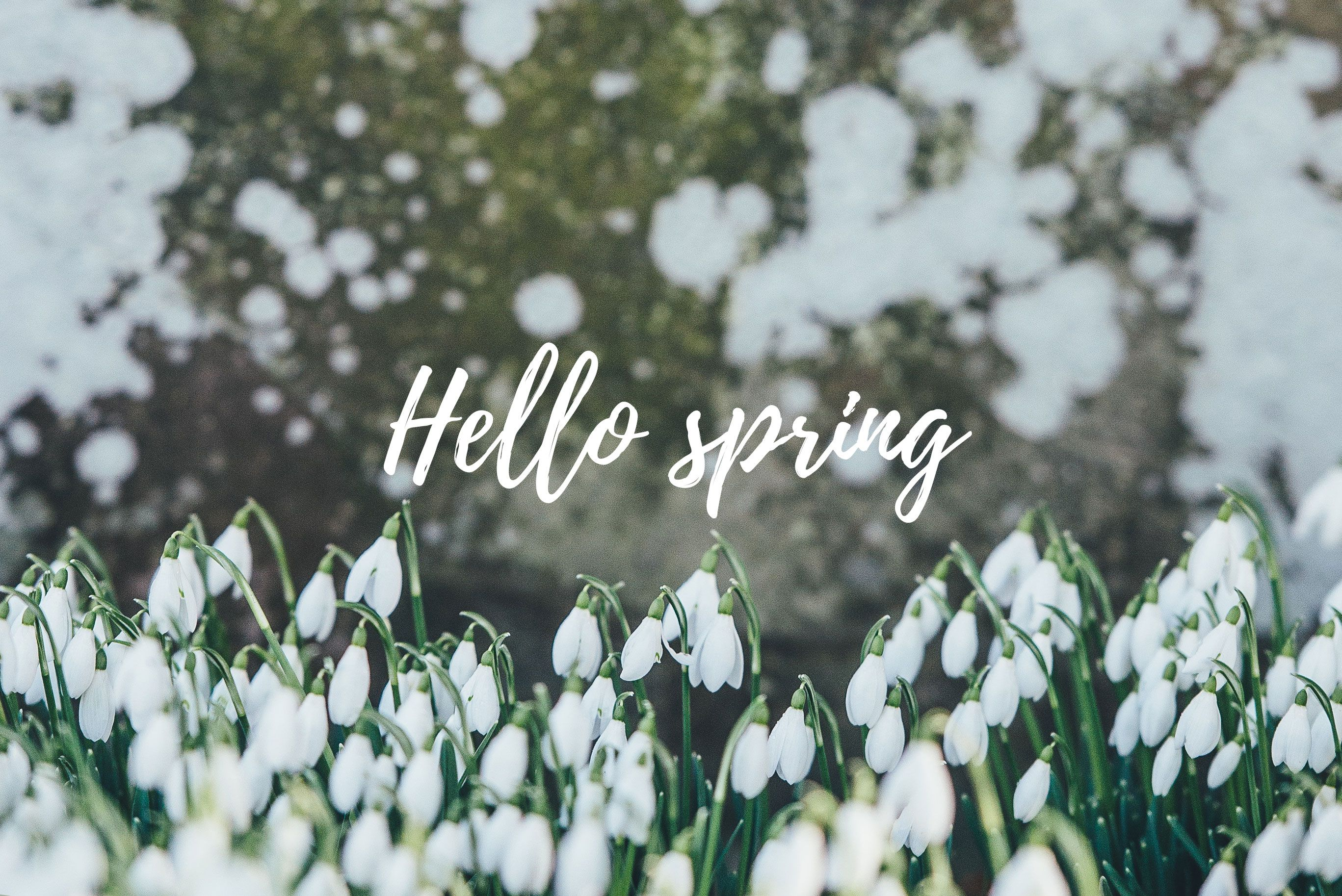 Free Spring Desktop Images Sonrisa Studio Spring Wallpaper Spring Desktop Wallpaper Desktop Wallpaper
