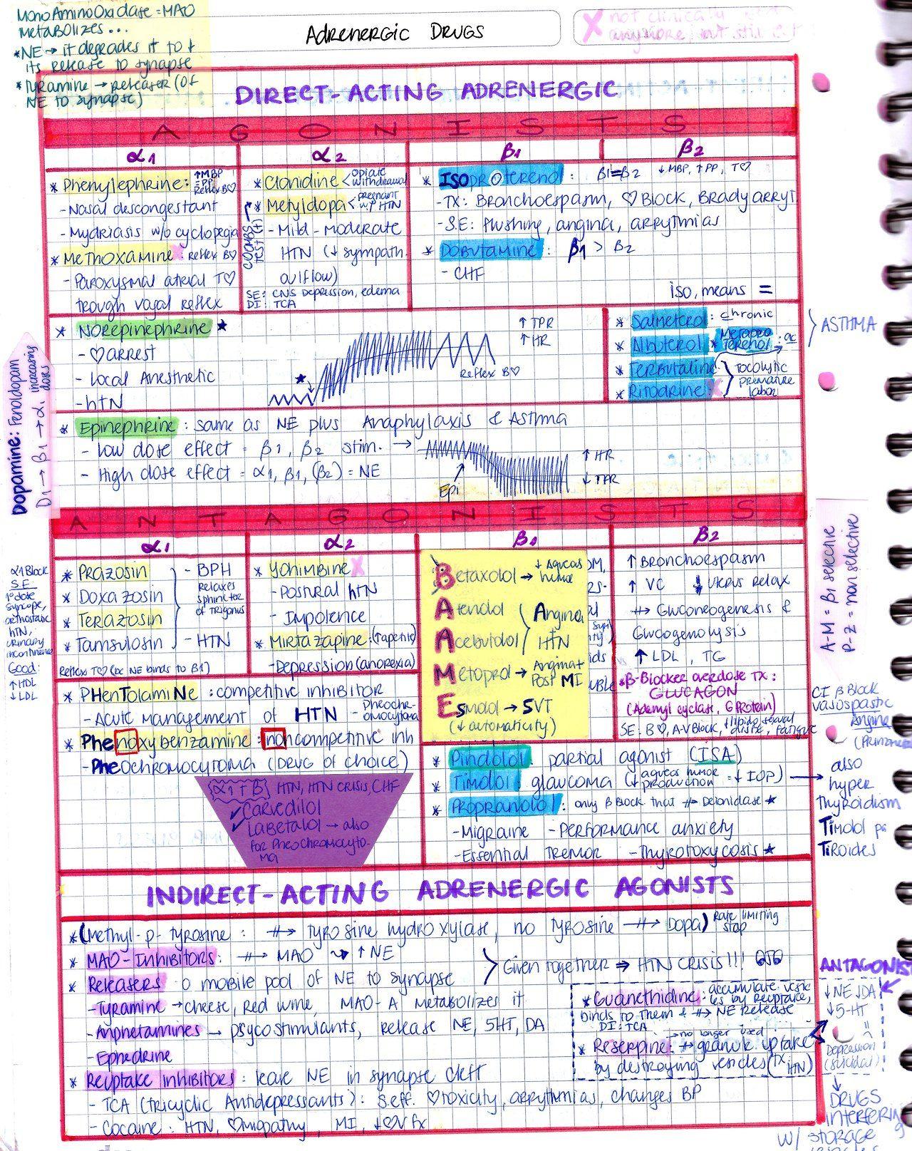 My Notes for USMLE | Study Motivation | Pharmacology nursing, Family