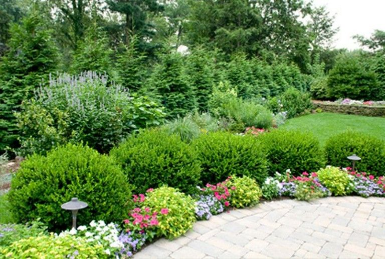 51 Smart Ideas To Make Evergreen Landscape Garden On Your Front Yard Gardening Gardendesign Gardenideas