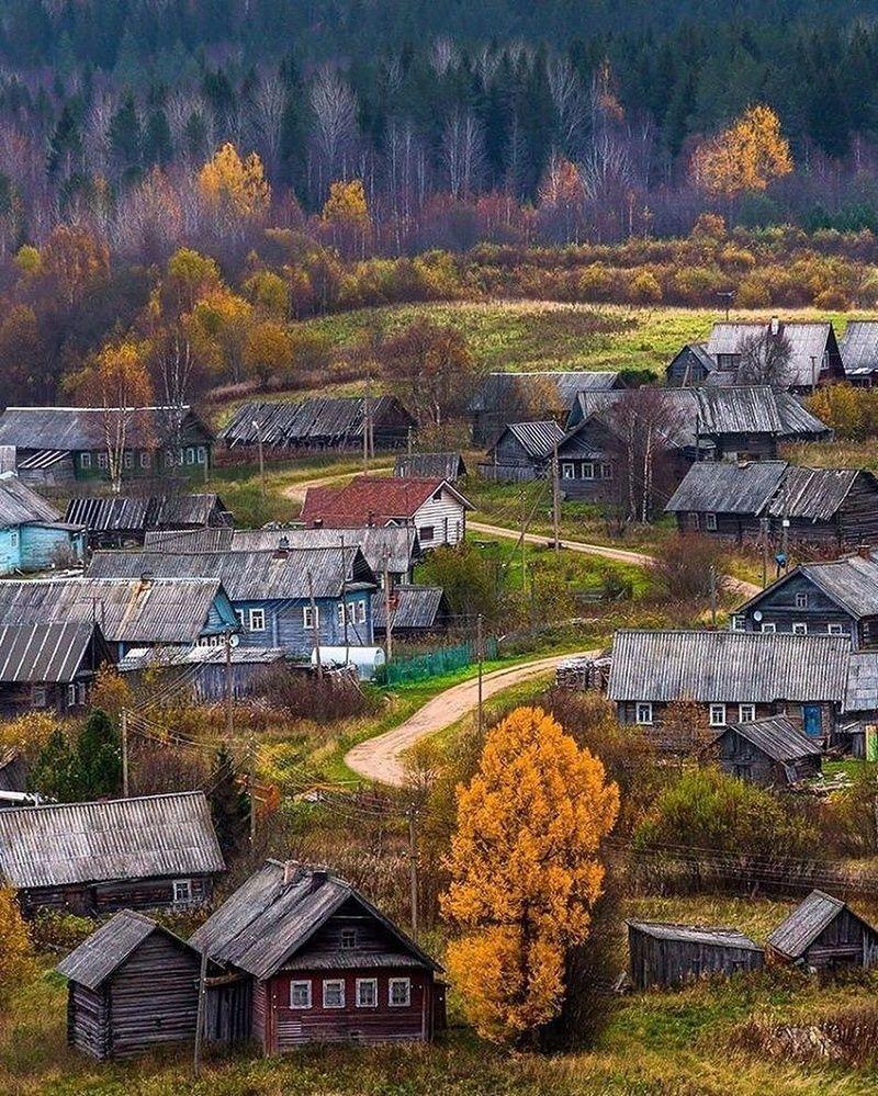 Фото на месте бывшей деревни