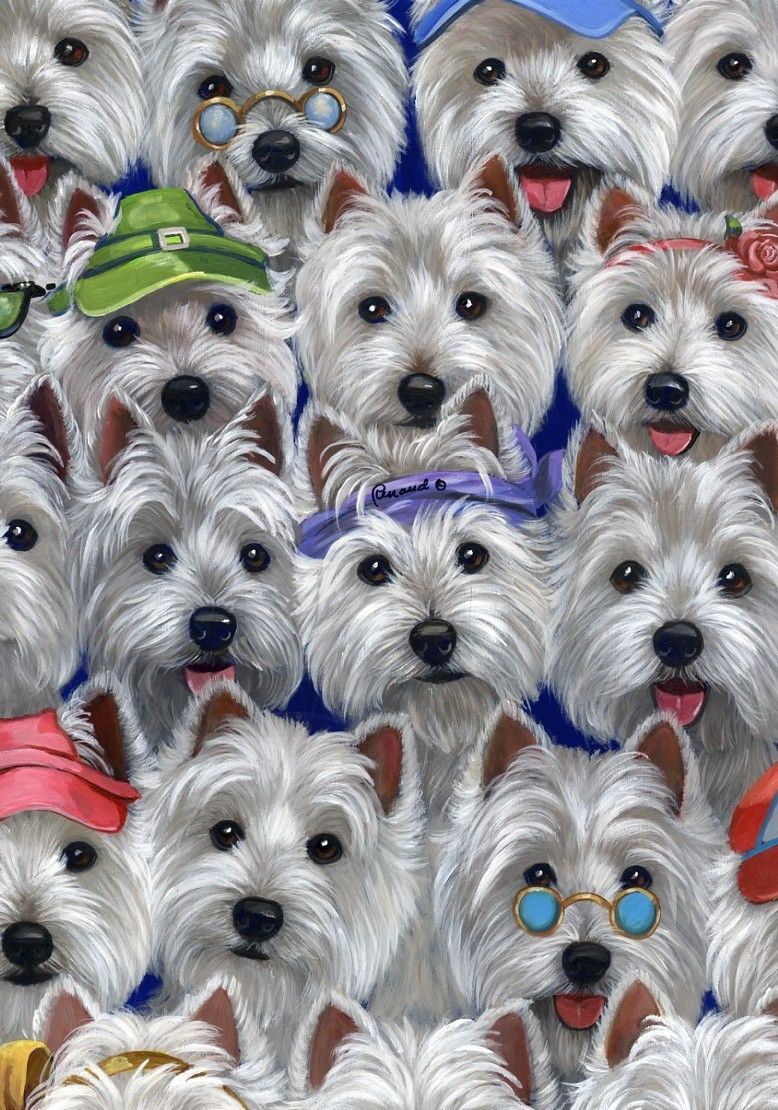 Bunches And Bunches Of Westies I M In Heaven Westie Dogs West Highland Terrier Westies