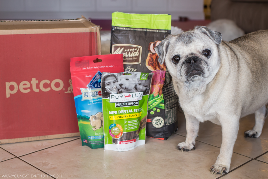 Simplify Your Pet Shopping With Petco 100 Amazon Gc Giveaway Petco Your Pet Pet Shop