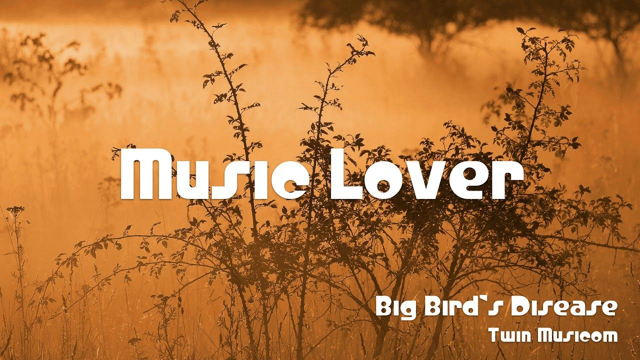 Big Bird S Disease Twin Musicom No Copyright Music Youtube Audio Library Copyright Music Big Bird Electronic Music