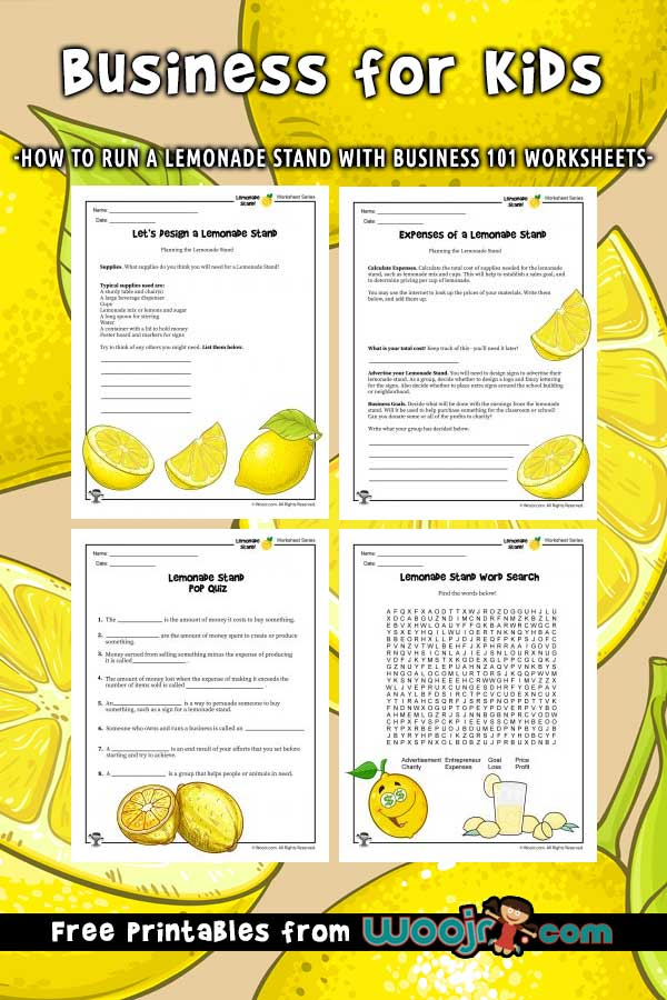 Business for Kids How to Run a Lemonade Stand Woo! Jr