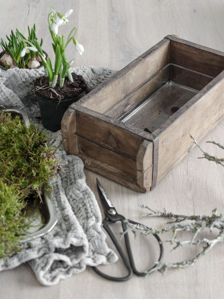 Photo of DECORATION   Early bloomer in brick form – mxliving