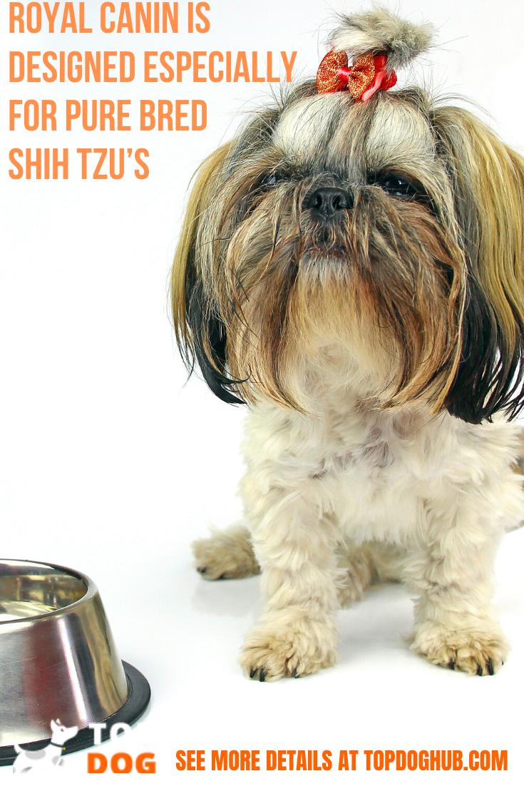 5 Best Shih Tzu Dog Foods 2020 in 2020 Shih tzu dog