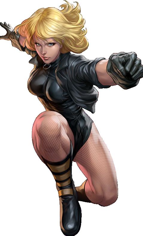 Black-canary---dc-comics.png 478×788 ピクセル