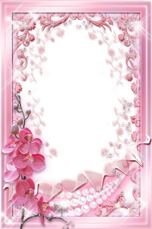 Glamour photo frame template - Pink Orchids | Free flower photo ...