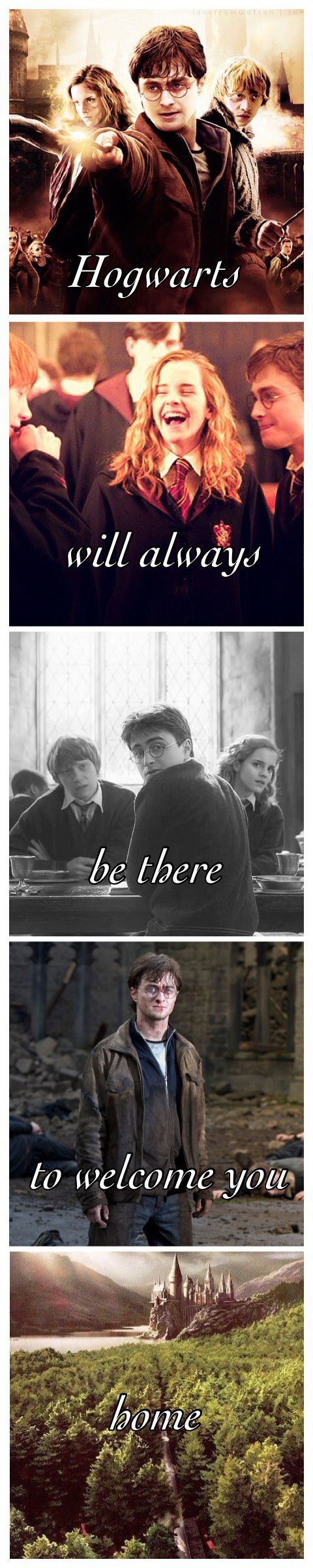Pin by Charl on HARRY POTTER | Harry potter memes, Harry