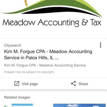 Meadow Accounting & Tax Ltd - Payroll Services - 525 South La Grange Rd, La Grange, IL - Phone Number - Yelp